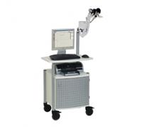 Carefusion Masterscreen PFT System