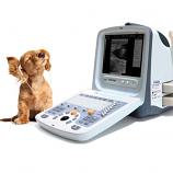 Chison 9300Vet Ultrasound System